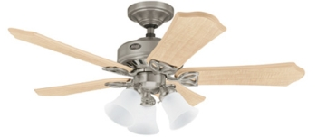 Hunter Ceiling Fan Ceiling Fan Hunter Edison Bulb For